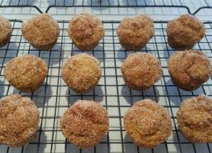 Pumpkin Donut Holes Cooling