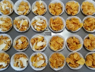 Toasted Coconut - Classic Honey Joys