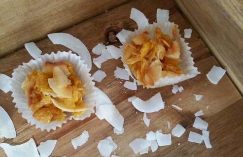 Toasted Coconut Honey Joys